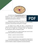 LINFÓCITOS.docx