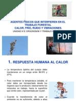 Agentes Físicos Que Interfieren en El Trabajo Forestal