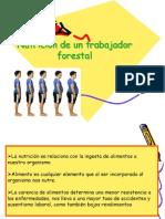 Alimentacion de Un Trabajador Forestal