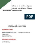 CARACTERISTICAS DOMINANTES
