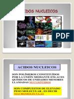 04. Ac Nucleicos