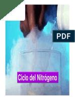 Tema Ciclo Del N
