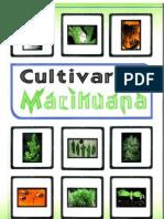 Marihuana, El Libro Mas Completo y Sencillo