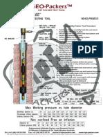 1.65 Dst Packer Test Tool