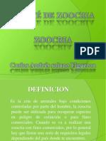 zoocria mvz