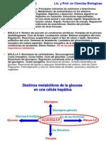 Clase via Pentosas