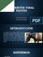 Arteritis Viral Equina 2