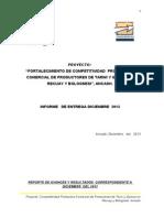 Informe Diciembre 2013