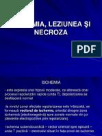 ISCHEMIA,+LEZIUNEA+ªI+NECROZA-2010