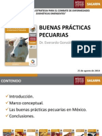 20100825 Buenas Practicas Pecuarias