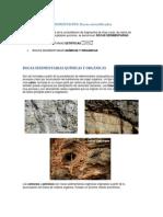 Rocas Sedimentarias Quimicas y Organicas