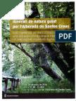 Itinerari Albereda de Santes Creus