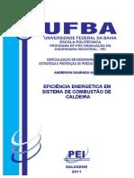TFC - ANDERSON DOURADO SALUM.pdf