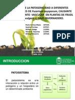 Adelanto Tecnicas de Microbiologia (1)