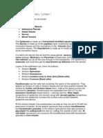 Wk6 Integumentary System I