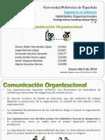 Habilidades Organizacionales - Comunicación Organizacional