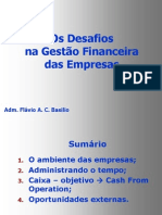 Flavio Basilio_desafios Gestao Financeira