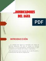 PRESENTACION BIOINDICADORES