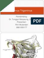 Nervus Trigeminus Ppt