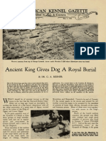 Egypt, Ancient King Gives Dog A Royal Burial By DR. G. A. REISNER