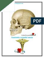 Toteanu_Cristina Anatomia Corpului Uman