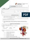 TESTE-SISTEMA-EXCRETOR.pdf