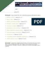 Estudo Nº 02 - As Consequências Do Pecado - Sem Timbre