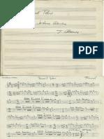 Sardana PASSANT FEBRE Florenci Mauné i Marimont