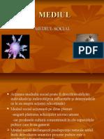 Anei LAVINIA Cl.10A.mediul Social