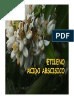 ABAETILENO 2008.pdf