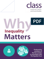 Why Inequality Matters