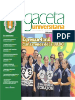 Gaceta 325