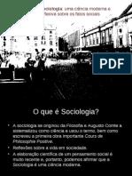 Sociologia Ciencia Moderna Reflexiva Sobre Fatos Sociais
