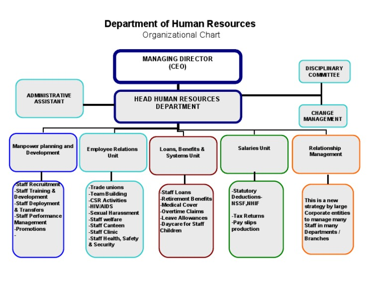 Human Resource Department Org Chart