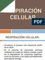 presentacion-110321135145-phpapp01