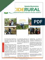 boletin001.pdf
