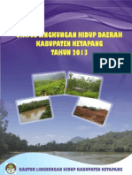 Lingkungan Hidup Kabupaten Ketapang