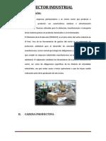 Cadena Productiva en El Sector Industrial Examen