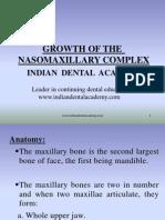 Growth of the Nasomaxillary / orthodontic courses by Indian dental academy