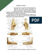 tratamentul artritei cu artroza cotului