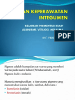 PPT ALBINISME (1)