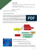 30209185-Fuerzas-intermoleculares