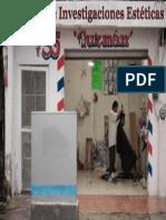 Instituto de Investigaciones Estéticas Guzman