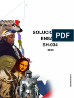 Solucionario Ensayo SH-034 2013