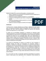 DiversidadMicrobianaColumnaWinogradsky_21554