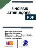 Wilsonaraujo Orcamentopublico Completo 053