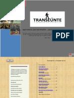 TRANSEÚNTE Edición 6
