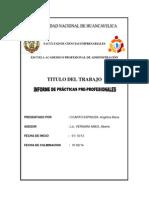 Informe Final Para Entregar
