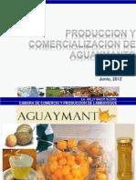 aguaymanto huaraz (1) (4)