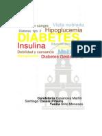 Trabajo de diabetes.docx
